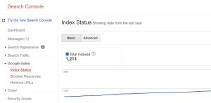 Search Console Index Status